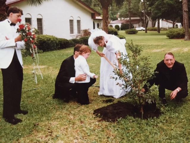 Tree planting best