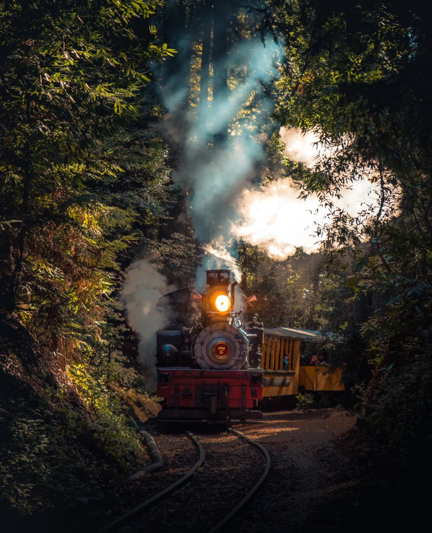 train asey-horner-490781-unsplash