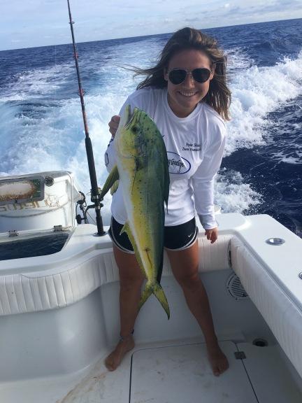CC Jadah fish